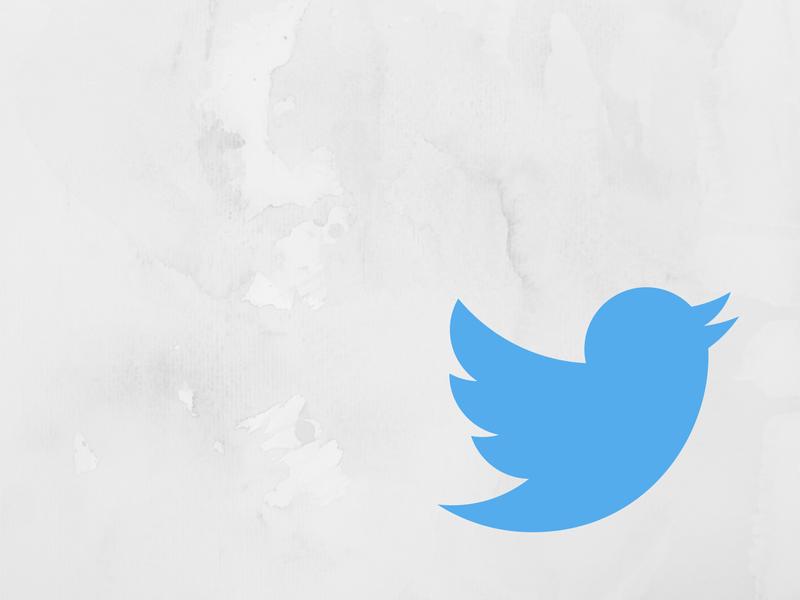 Twitter bird against white marble background