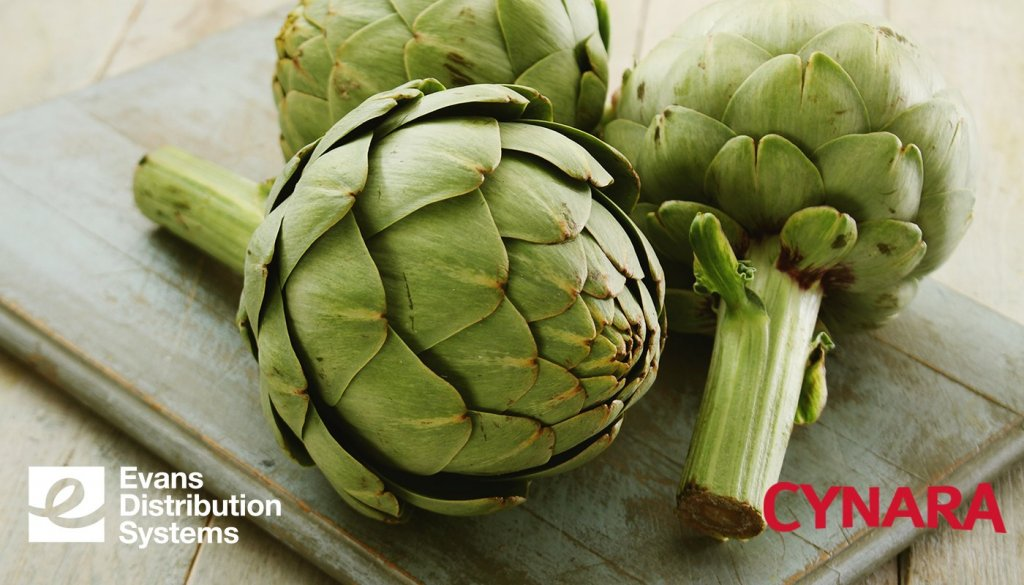 Artichokes with the Evans Distribution Systems and Cynara logos.
